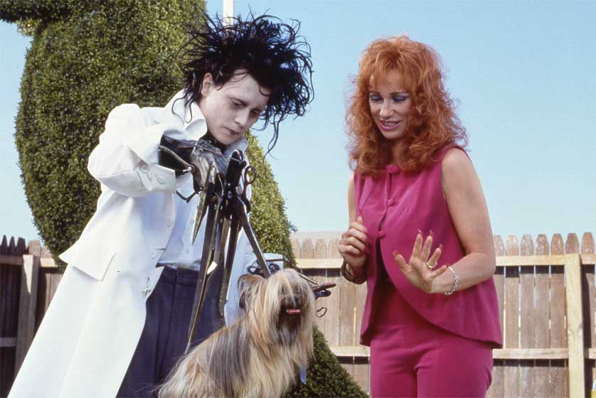 Edward-Scissorhands-Dog