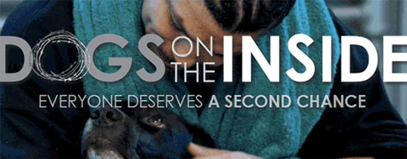 Dogs-On-The-Inside-Candido-Title