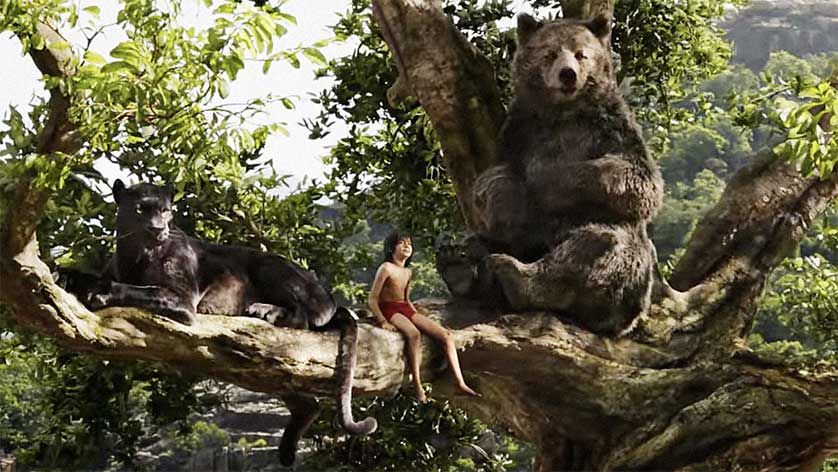 The-Jungle-Book-Baloo-Bagheeri