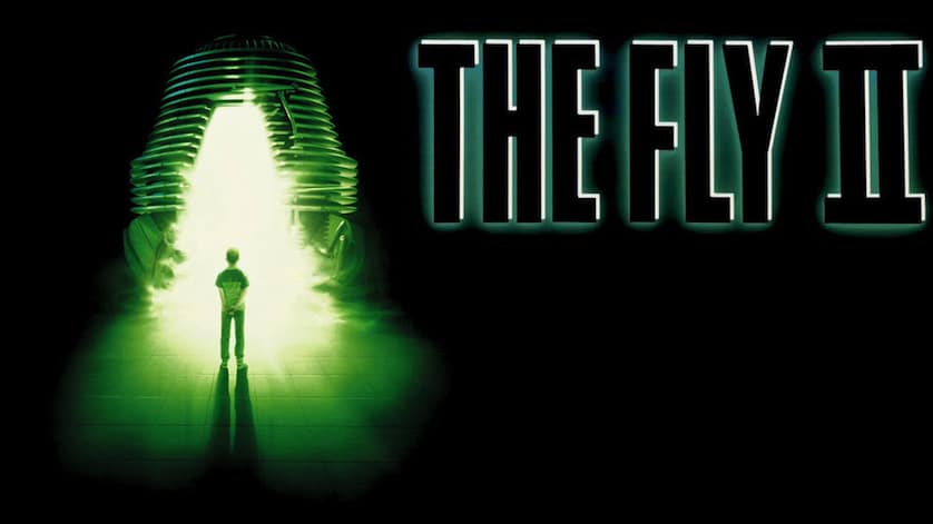 the-fly-2-banner