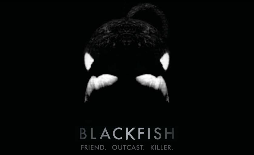SeaWorld Admits <em>Blackfish</em> documentary has hurt attendance